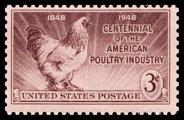 Poultry Industry - USA - 1948